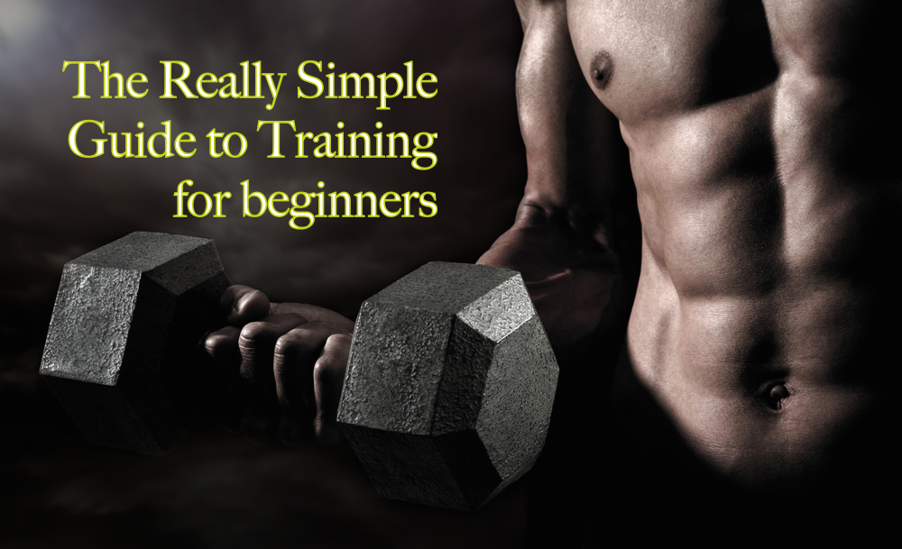 Simple guide to training